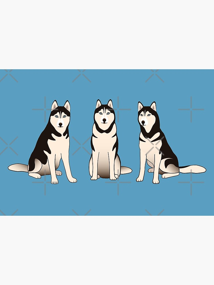 Husky Dogs on blue by nadyanadya