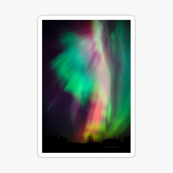 Beautiful multicolored northern lights in Finland Sticker