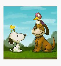 0034 - Bird Dogs Photographic Print