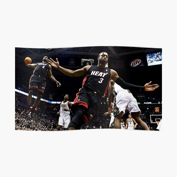 Lebron and Dwade Póster