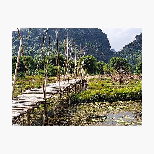 Rural Bamboo Bridge, Trang An Region, Vietnam Photographic Print