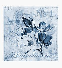 Blue Magnolia Photographic Print