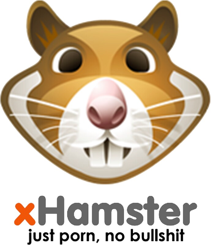 xbhamster Nov 2016  Reports indicate that an estimated 380,000 xHamster users may have been  hacked, with cyber criminals trading the details on the web.