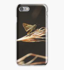 Greenish grass-dart (Ocybadistes walkeri) - Kensington Gardens, South Australia iPhone Case/Skin