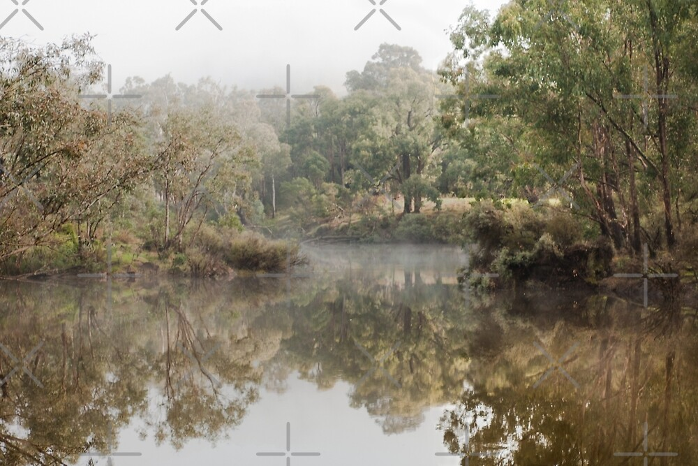 Mist on the Blackwood at Sunnyside Reserve, Western Australia by Elaine Teague