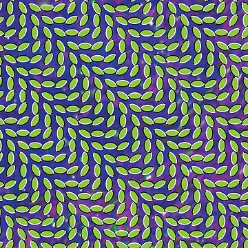 Merriweather Post Pavilion by emptyeyes