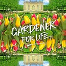 Petit Trianon Tulips Versailles Palace Gardens Paris France by Beverly Claire Kaiya