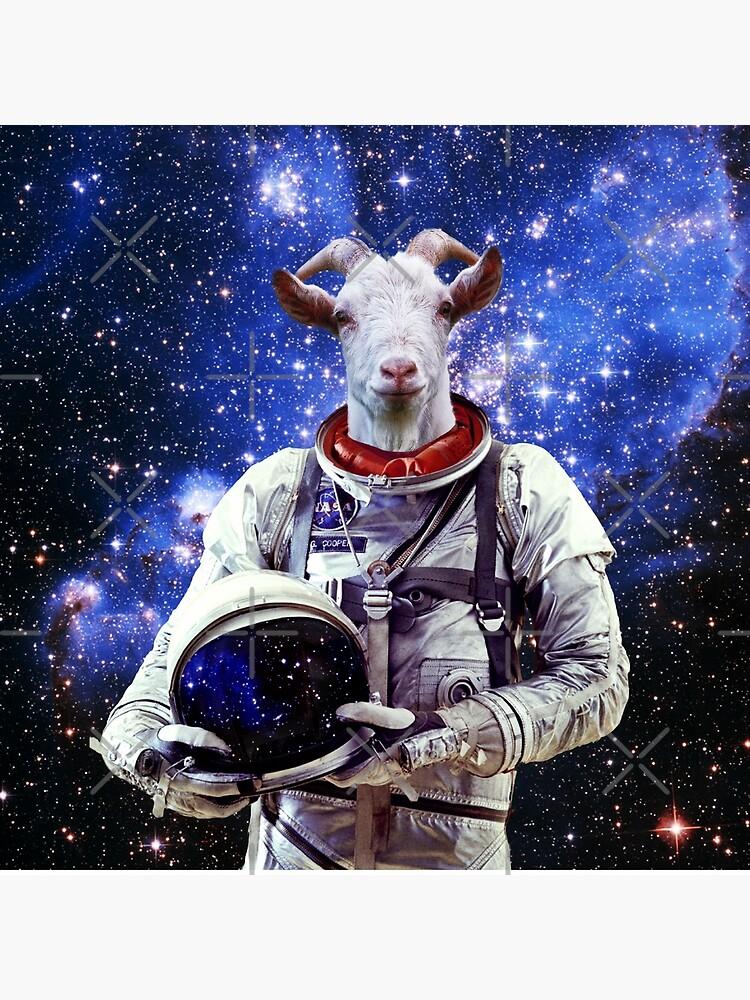 Ziege Astronaut im Weltraum von Doge21