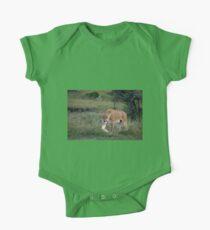 Lioness on the Masai Mara One Piece - Short Sleeve