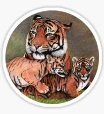 Family of tigers Sticker