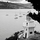 Akaroa, New Zealand. by VanOostrum