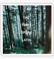 The Trees Speak Latin - The Raven Cycle Sticker
