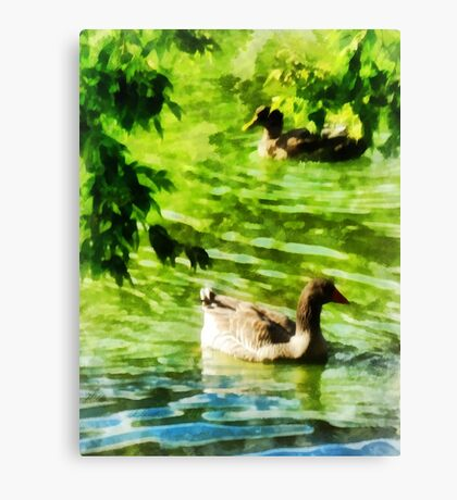 Ducks on a Tranquil Pond Canvas Print