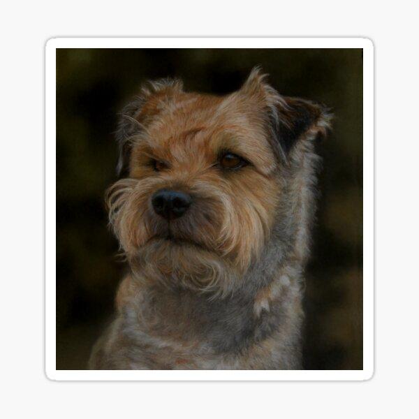 Border Terrier Pastel Art Painting Sticker