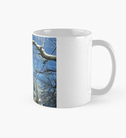 Northeast snow storm (USA) Mug