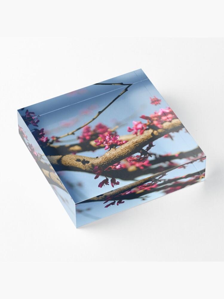 Alternate view of Eastern Redbud Acrylic Block