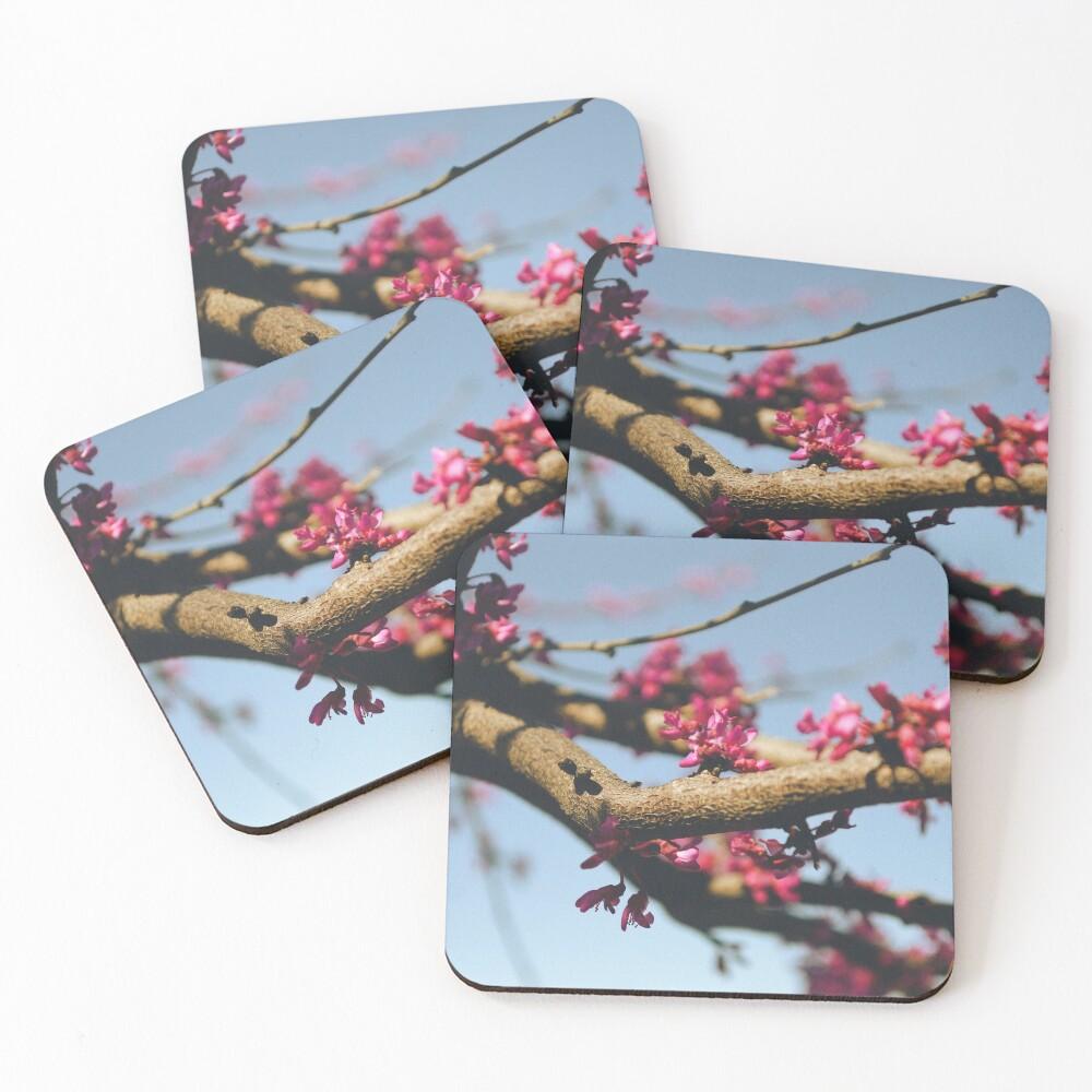 Eastern Redbud Coasters (Set of 4)