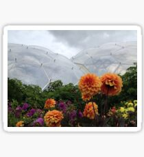 Biodome with some flowers no 2 Sticker