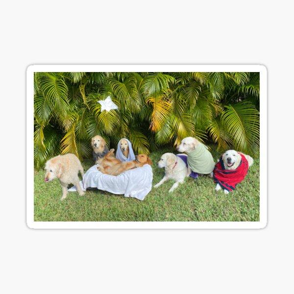 Golden Ratio Nativity Sticker