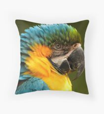 Macaw with Ruffled Feathers Throw Pillow