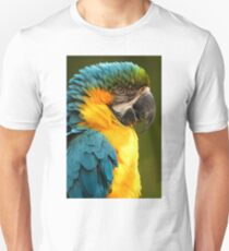 Macaw with Ruffled Feathers T-Shirt