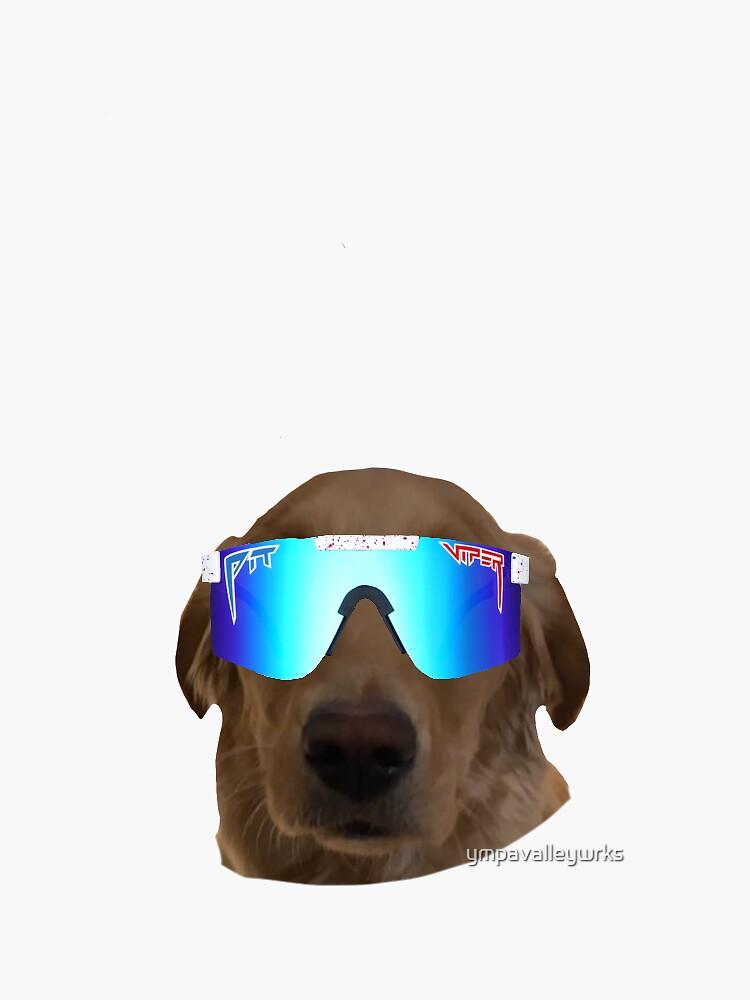 Dog Pit Viper  by ympavalleywrks