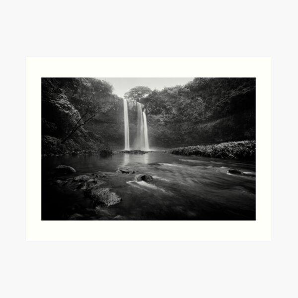 In the Rain - Kauai Art Print