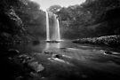 In the Rain - Kauai by Michael Treloar