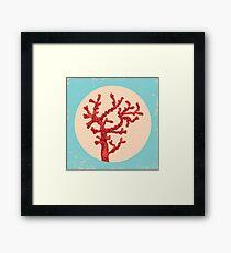 Red coral Framed Print