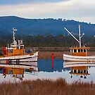 Boats Along the Huon by jayneeldred