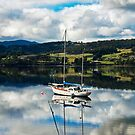 Boats on the Huon by jayneeldred