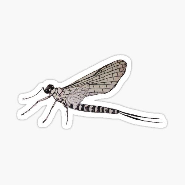 mayfly Sticker