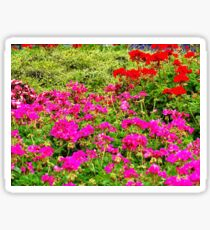 Flowerbed Sticker