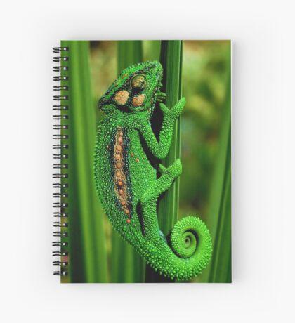 Cape Dwarf Chameleon II Spiral Notebook