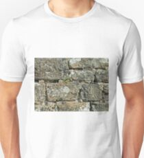 Stone Wall T-Shirt