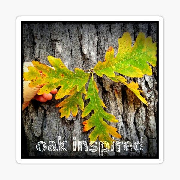 oak inspired white oak group leaves and bark Sticker