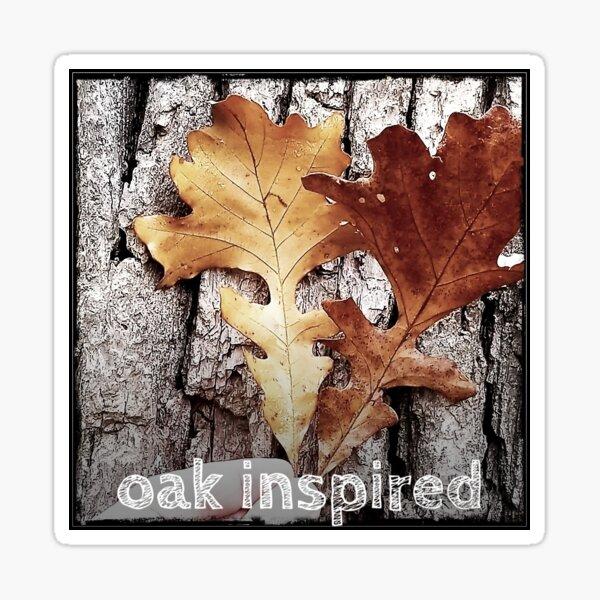 oak inspired bur oak leaf and bark Sticker