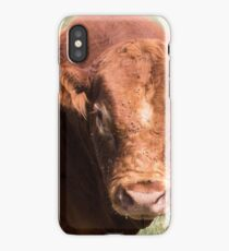 You don't scare me! iPhone Case/Skin