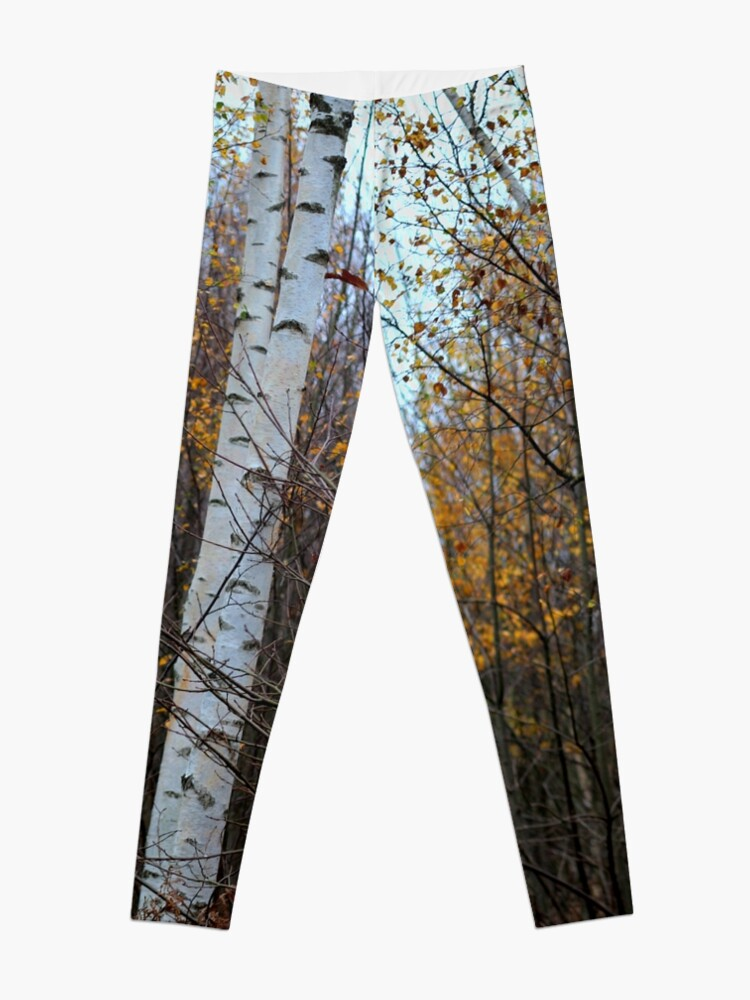 Alternate view of Birch Trees in the Autumn Leggings