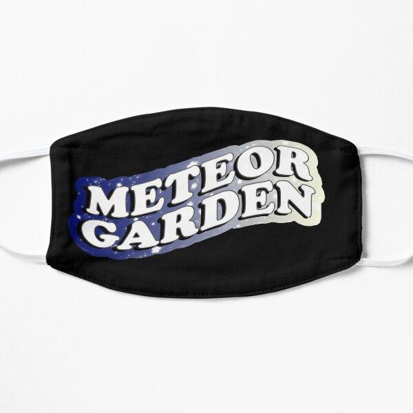 Meteor Garden Starry Sky Aesthetic Mask
