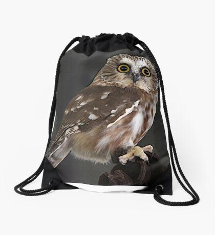 Northern Saw Whet Owl Drawstring Bag