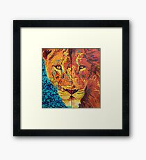 Spectra Sexuality Framed Print