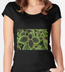 Green Ric Rac Edging Women's Fitted Scoop T-Shirt