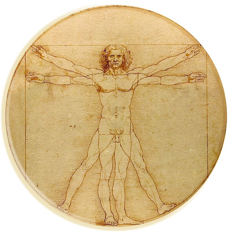 leonardo da vinci the vitruvian man circle accademia venice on vellum stickers. Black Bedroom Furniture Sets. Home Design Ideas