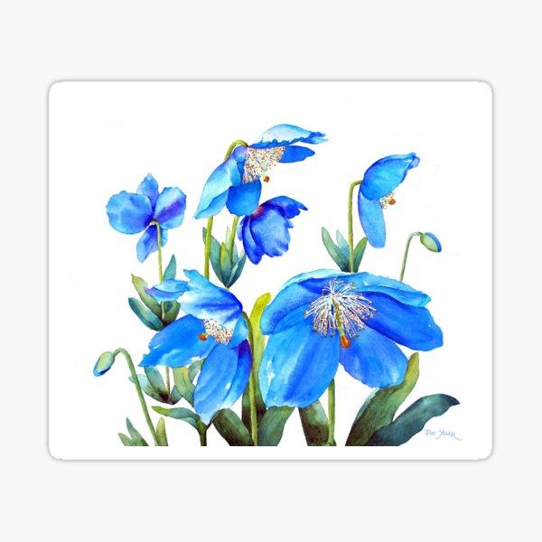 Himalayan Blue Poppies Sticker
