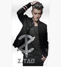 Z.Tao Poster
