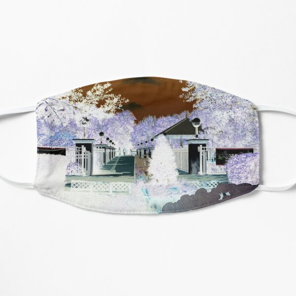 Winter Snow-II Florida WHITE background Mask