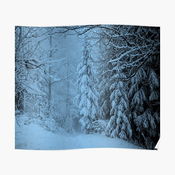 Beautiful snowy evening Poster