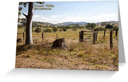 Rural Scene near Gresford, NSW by SNPenfold