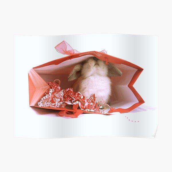 Mini Lop Rabbit Christmas Poster